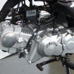 TSS Bikes Skyteam T-Rex